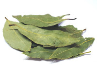 laurel-hoja