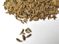 Caraway seeds, detail