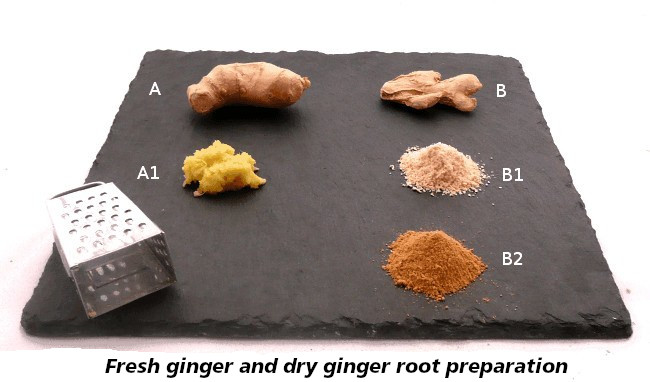 ginger grated, crushed, fresh or dry