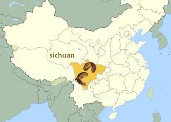 sichuan-provincia-china