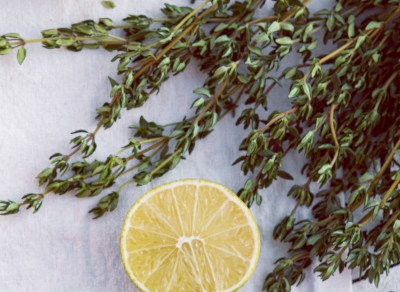 Thyme is one of the most valued aromatic herbs