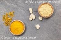 La curcuma y el jengibre, mejor en crudo
